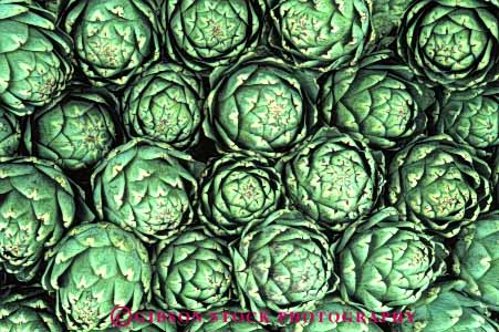 Stock Photo #6460: keywords -  agriculture artichoke artichokes california crop crops cultivate cultivated cultivating cultivation farm farming farms food green horz produce