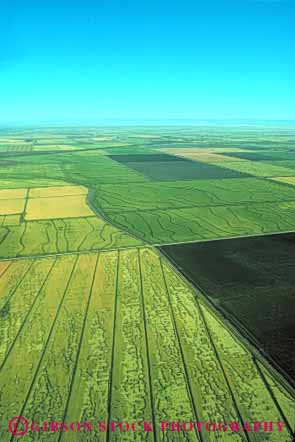 Stock Photo #6524: keywords -  aerial agriculture california crop crops cultivate cultivated cultivating cultivation elevate elevated farm farming farms field fields food geometric geometry grain green grow growing grown growth horizon pattern plant plants rice sacramento sky valley vert