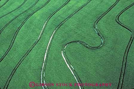 Stock Photo #6539: keywords -  aerial agriculture california crop crops cultivate cultivated cultivating cultivation farm farming farms field flood food grain grow growing grown growth horz irrigation plant plants rice water