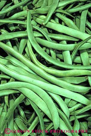 Stock Photo #6621: keywords -  agriculture bean beans crop crops cultivate cultivated cultivating cultivation farm farming farms food fresh green grow growing growth legume legumes plant plants pod pods seed seeds vegetable vegetables vert vine vines
