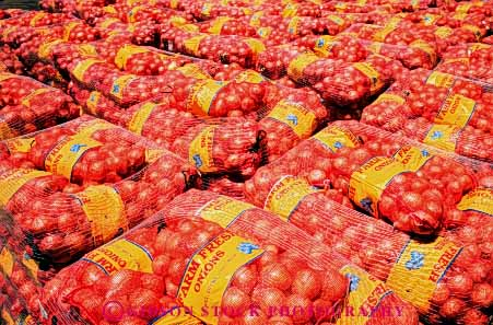 Stock Photo #6645: keywords -  agriculture array bags crop crops food group horz lot many multitude of onion onions orange package packaged packaging processed produce product shipment