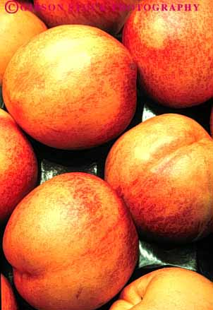 Stock Photo #6741: keywords -  agriculture circle circular delicious food fruit fruits hard hardnut lots many nectarine nectarines nut pile produce ripe round sphere spheres spherical vert