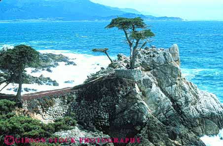Stock Photo #7255: keywords -  alone california carmel coast coastal continent cypress drive edge granite horz land landscape lone lonely marine maritime mile nature ocean point privacy private scenery scenic sea seascape seashore seventeen shore shoreline solitary solitude surf tree trees wave waves