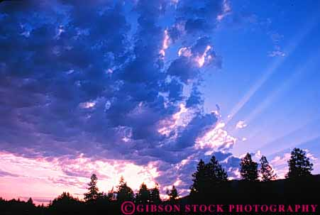 Stock Photo #7304: keywords -  bonners climate cloud clouds dawn dramatic dusk ferry forest horz landscape mood moody nature pine scenery scenic sun sunrise sunset tree trees warm washington weather