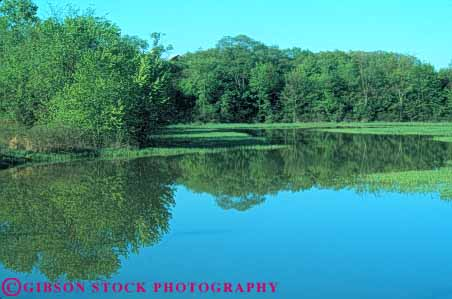 Stock Photo #7097: keywords -  beautiful beauty berlin calm environment forest freshwater horz lake landscape nature ohio peaceful pond pretty pristine pure quiet reflection remote runoff scenery scenic solitude still summer tree trees water wet wild wilderness
