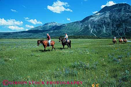 Stock Photo #5601: keywords -  alberta animal glacier grass green group horse horseback horses horz large mammal meadow mountains national outdoor outdoors outside park people recreation ride rider riding sport tour trained waterton west western wilderness