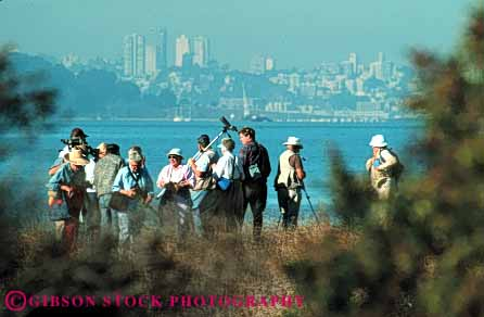 Stock Photo #5976: keywords -  bay bird birding birds ca california count counting francisco group horz identify identifying look nature outdoor outdoors outside san see spot spotting summer tracking vision watching wildlife