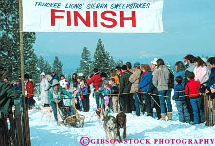 Stock Photo #6249: keywords -  animal ca california canine cold compete competing competition competitor contest coordinate coordinated coordination course dog dogs effort glide group horz mammal pull race racers races racing recreation run runners running runs sled sledder sledding slide snow sport sports strength team tow truckee winter