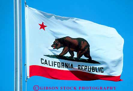 California State Flag Stock Photo 11400