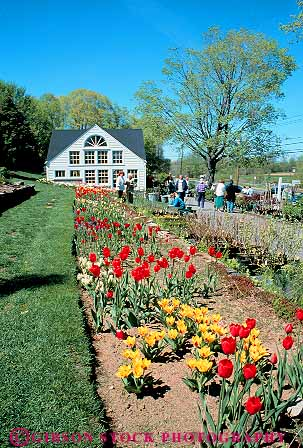 People at white flower farm litchfield connecticut stock photo 14276 stock photo 14276 keywords business center connecticut customer customers england farm flower flowering mightylinksfo