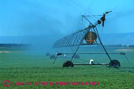 Stock Photo #1270: keywords -  agriculture alfalfa center crop crops equipment euipment farm farming farms grain grow horz irrigate irrigates irrigating irrigation moist pivot resource spray spraying sprays sprinkle sprinklers washington water watering waters