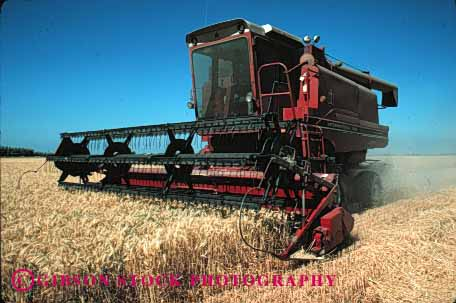 Stock Photo #1273: keywords -  agriculture california crop crops cut dry equipment farm field fields food grain grow harvest harvested harvester harvesters harvesting horz implement in machine rio summer vista wheat