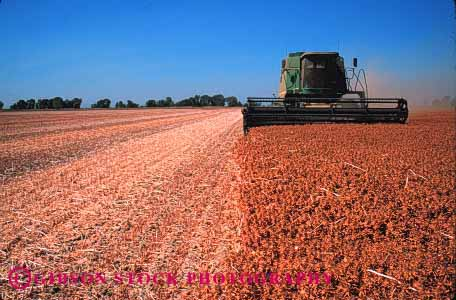Stock Photo #1274: keywords -  agriculture california colusa crop crops cut dry equipment farm field fields food grow harvest harvested harvester harvesters harvesting horz implement in machine safflower summer working