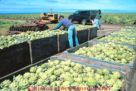 Migrant Workers Health Articles