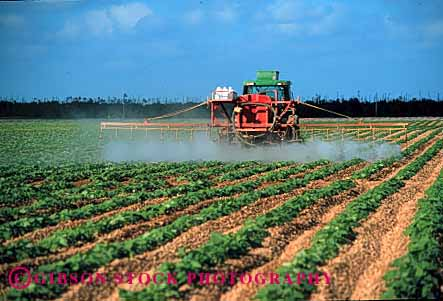 Stock Photo #1293: keywords -  agriculture crop danger dithane environment equipment farm field florida food grow hazard homestead horz industry job machine pesticide poison pollution risk spray squash tractor work