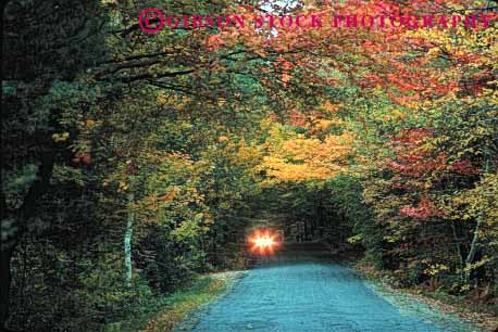 Stock Photo #1493: keywords -  alone auto autumn car dark dawn drive dusk fearful forest hampshire horz insecure isolated lights new r remote road rural street sunrise sunset vehicle