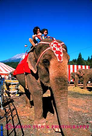 Stock Photo #2000: keywords -  animal child children circus elephant girl happy not released ride show vert