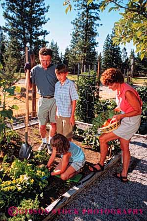 Stock Photo #2544: keywords -  child children family father food garden gardening grow harvest home mother parent produce recreation released summer together vegetable vert