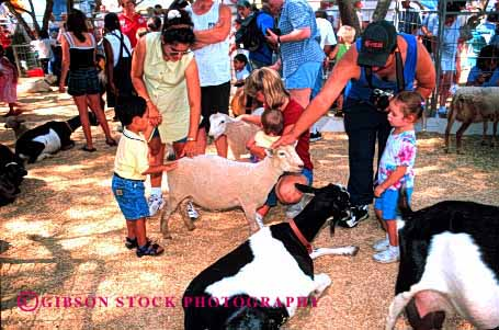 Stock Photo #3157: keywords -  activity amusement animal annual attraction california child children event fair families familiy family festival fun goat horz kid kids park parks people person petting play public sacramento state summer touch zoo