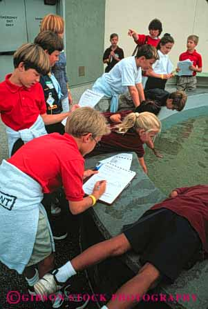 Stock Photo #4299: keywords -  adolescent aquarium beach biology boy boys child children class educate education elementary field fifth girl girls grade group learn long notes school science students study summer together trip vert write young youth