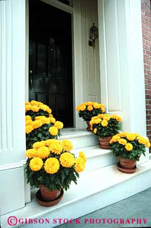 Stock Photo #4381: keywords -  architecture custom decorate decoration decorative design door doorway entrance entry flowers front greet home marigold plant plants potted vert
