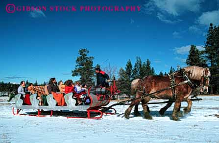 Stock Photo #4426: keywords -  fun holiday horse horses horz lake passenger pull recreation ride sleigh slide snow tahoe tour winter