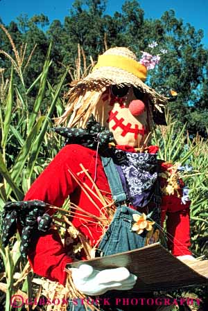 Stock Photo #4567: keywords -  art artificial artistic character corn fake farm field hat immitation person scarecrow stuffed vert woman