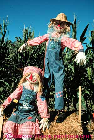 Stock Photo #4568: keywords -  art artificial artistic character corn couple fake farm field hat immitation person scarecrow scarecrows stuffed vert
