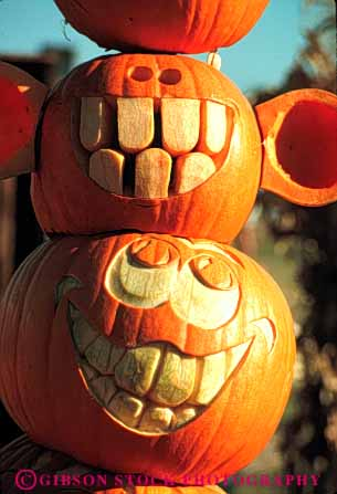 Stock Photo #4643: keywords -  autumn carve carved characters face faces fall halloween harvest holiday jack lantern o orange outdoor outside pumpkin pumpkins round season smile teeth vert