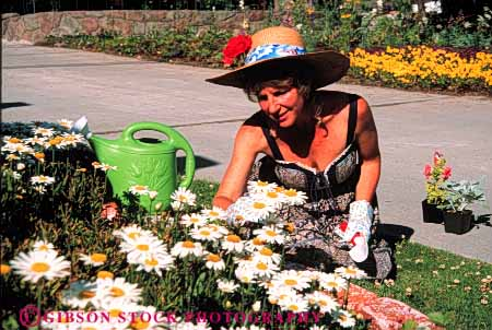 Stock Photo #5059: keywords -  cultivate flower garden gardener gardening grower grown hobby home horz outdoor outdoors outside plant plants released residence residential skill soil summer woman work